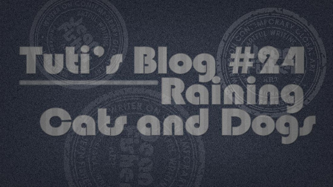 Raining cats and dogs text on a fabric background