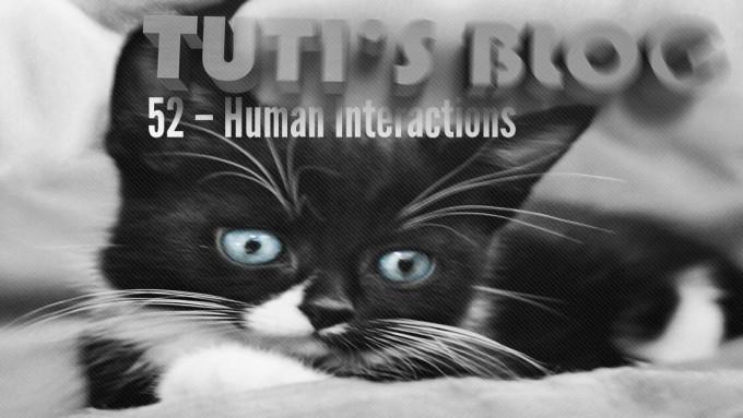 Human Interactions, tuti fruti as a kitten